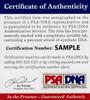Pete Rose Cincinnati Reds 16-3 16x20 Autographed Photo - Certified Authentic