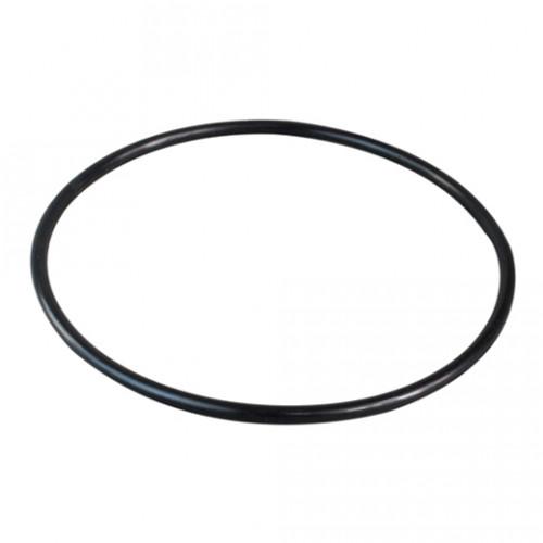 Everpure - O-ring - 151120