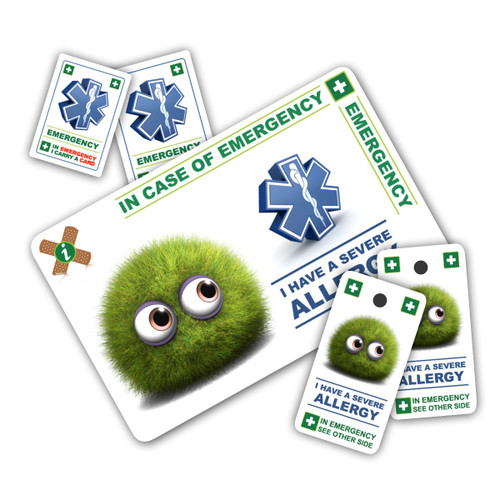 ALLERGY Child ICEcard Pack - 1 Card with 2 Key Rings & 2 Stickers