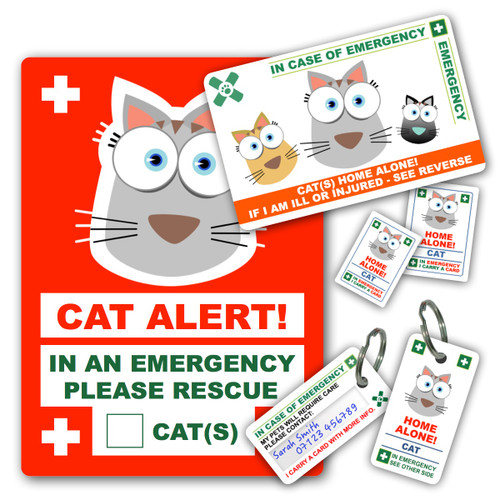 CAT design PetICE PREMIUM BUNDLE - 1 CAT Card, 2 Cat Key Rings, 2 CAT Stickers & 1 CAT Window Cling