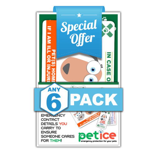 SIX PACK SPECIAL OFFER