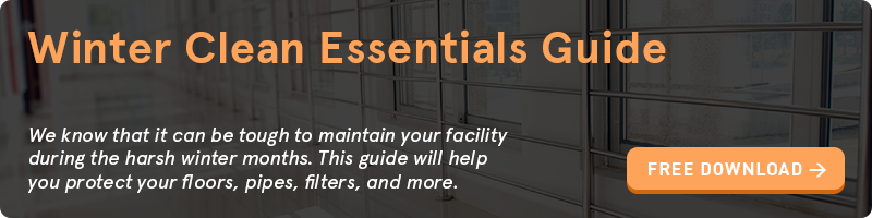 Download the Winter Clean Essentials Guide