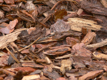 premium play bark and decorative bark mulch