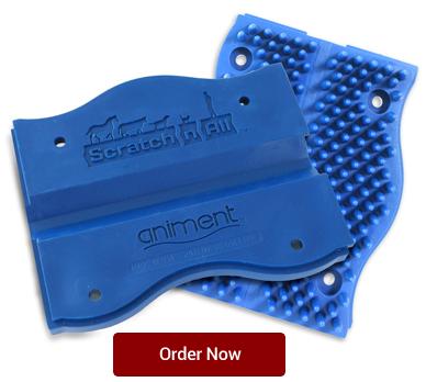 blue-pads-order-now.jpg