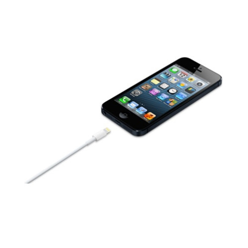 Apple iPhone Lightning to USB Cable 1M