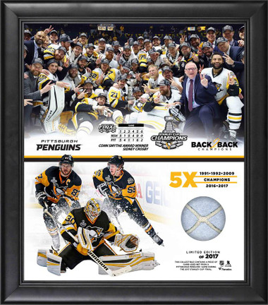 Pittsburgh Penguins NHL Stanley Cup Championship Framed Piece w/ Game-Used Netting