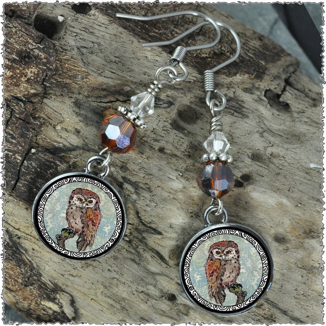 Owl Blue Crystal Circular Earrings