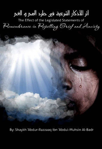 The Effect of the Legislative Statements of Remembrance in Repelling Grief and Anxiety