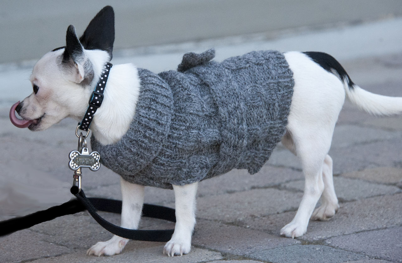 Aran Style Cable Turtle Neck Dog Sweater  On dog
