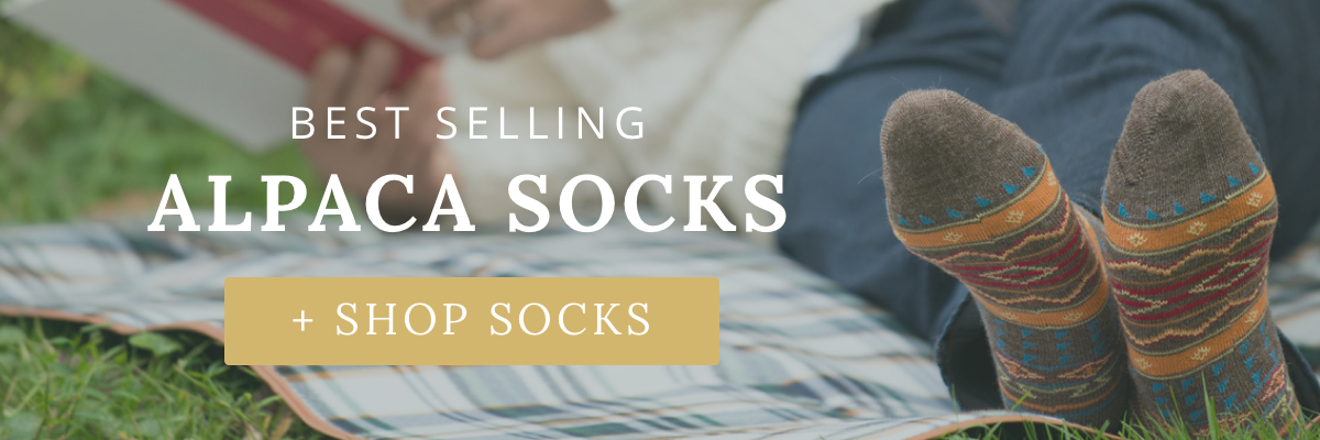 socks-banner-2x.png