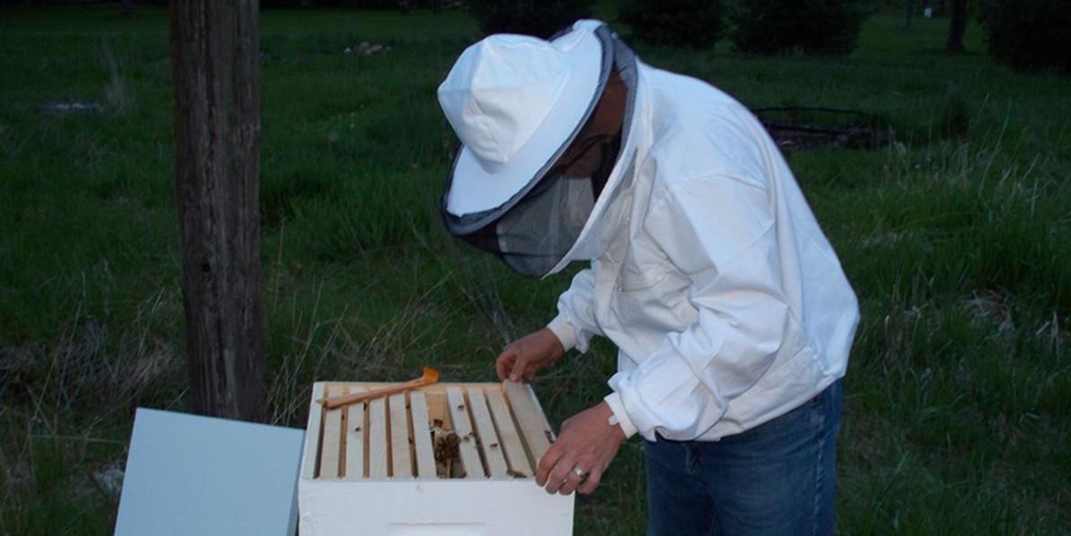 Portage County Beekeepers Beginner Beekeeper Class
