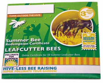 Summer Leafcutter Bee Certificate [SL-CERT / M9208]