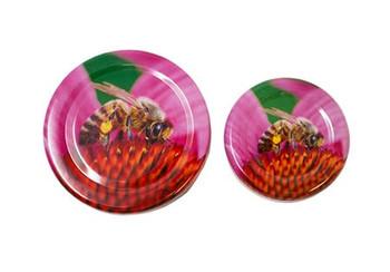 Honey Bee on Pink Coneflower