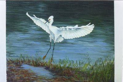 ah-majestic-egret-pix-18030-sm.jpg