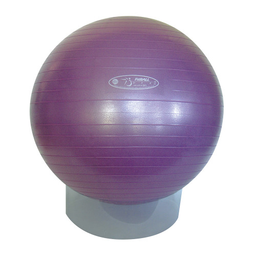 FitBALL® Exercise Ball