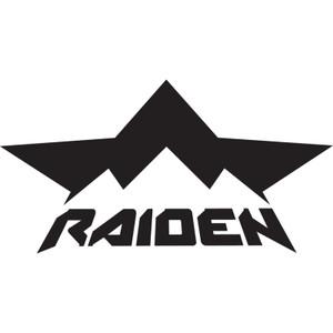 Icon - Raiden