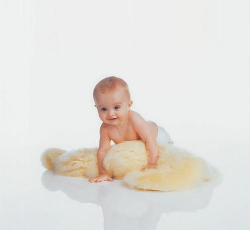 BabyDan Lambskin Stroller/Car Seat with baby