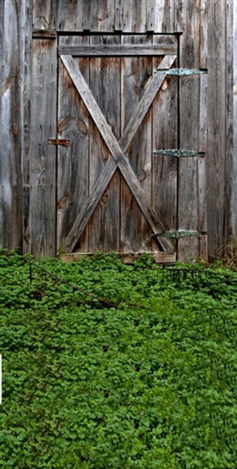 Grass And Barn Door 3d Backdrop Owens Originals Backdrops
