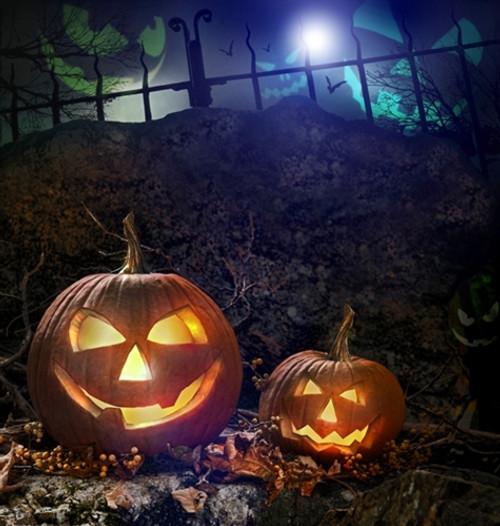 jack o lantern halloween backdrop 1