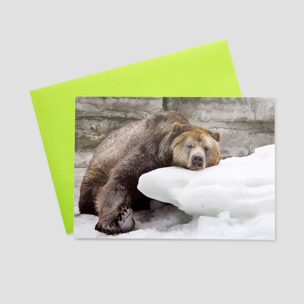 Funny Keep In Touch Business Greeting Cards