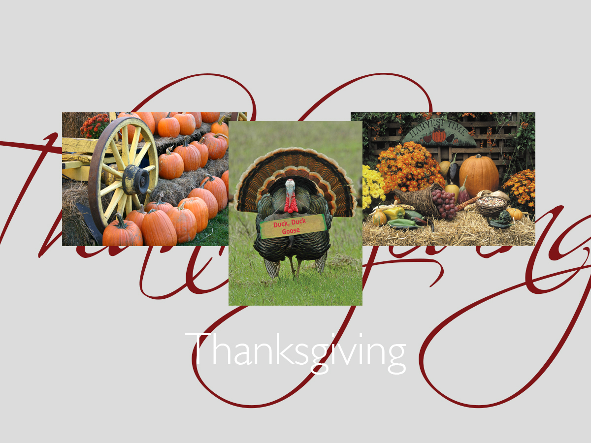 Thanksgiving greeting card banner featuring three top-selling Thanksgiving cards