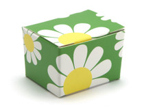 1 Choc Ballotin - Daisy Floral | Meridian Speciality Packaging