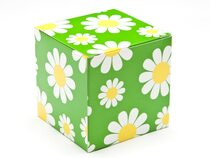 80mm Transparent Cube Carton - Daisy Floral | MeridianSP