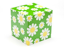 100mm Cube Carton - Daisy | Meridian Speciality Packaging
