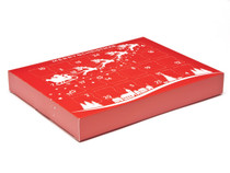 Premium Light Advent Calendar - Sleigh| MeridianSP