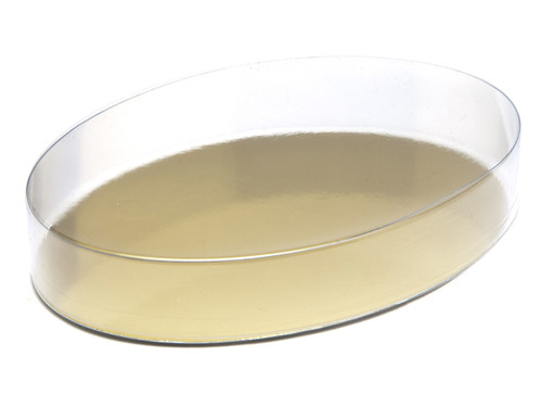 Small Oval PVC Base and Lid | Meridian Speciality Packaging