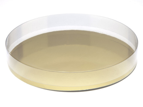 180mm Round Transparent Base and Lid - Clear   MeridianSP