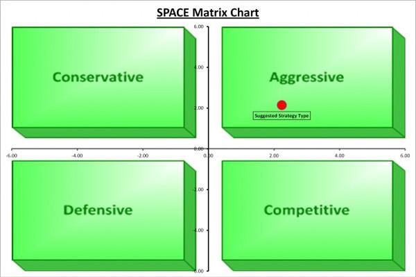 SPACE Matrix Chart Template
