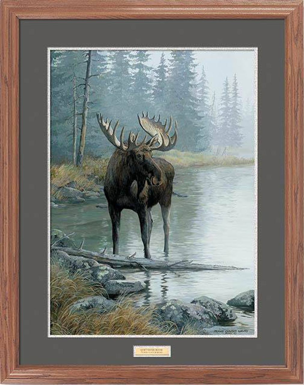 Bull Shore Moose Framed Art | American Expedition