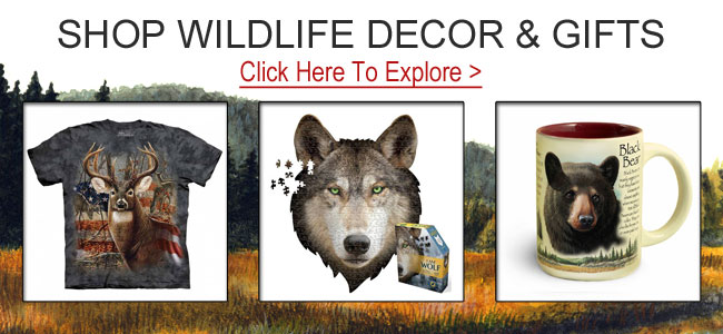 Shop animal gifts and decor.