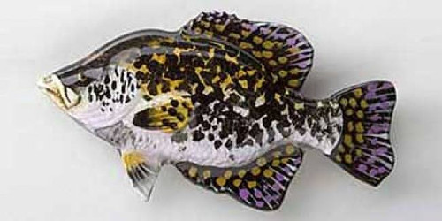 Black Crappie Painted Metal Lapel Pin