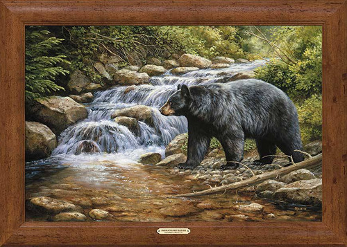Black Bear Falls Framed Print