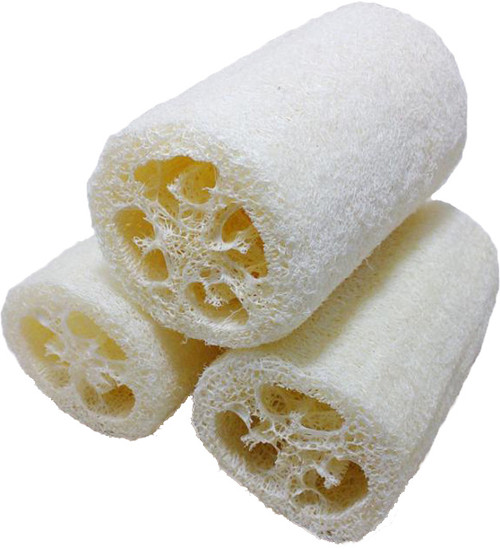 Natural Loofah Sponges-A Natural exfoliate made from the fibrous interior of the loofah plant