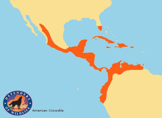 American Crocodile Range