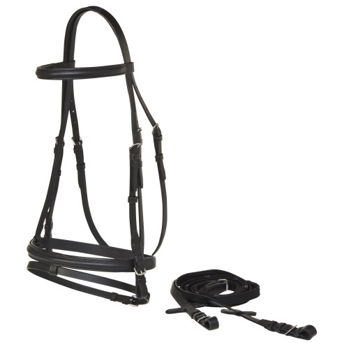 Landsborough Economy Eventing Bridle (Black)