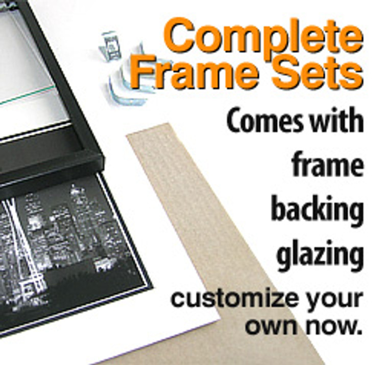 11 x 14 Regular Metal  Frame Set (Complete with Standard Clear Glass and Cardboard Backing)