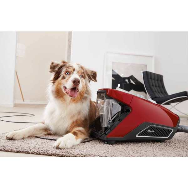 MIELE BAGLESS CX1 BLIZZARD CAT AND DOG