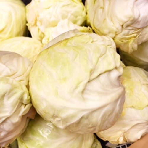 Certified Organic Green Cabbage (1kg)