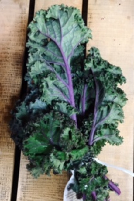 Certified Organic Purple Kale (Each)