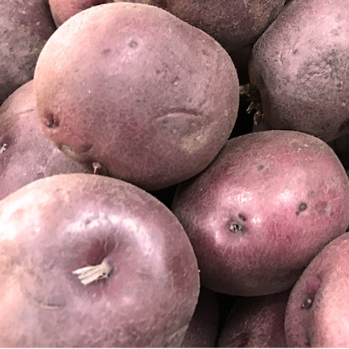 Certified Organic Red Potato (2.27kg bag)