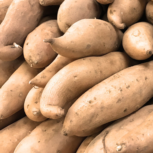 Certified Organic Sweet Potato (1 kg)