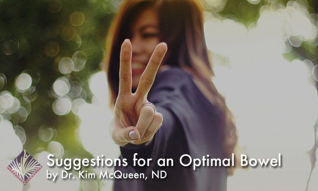 Suggestions for an Optimal Bowel - Dr. Kim March 2018