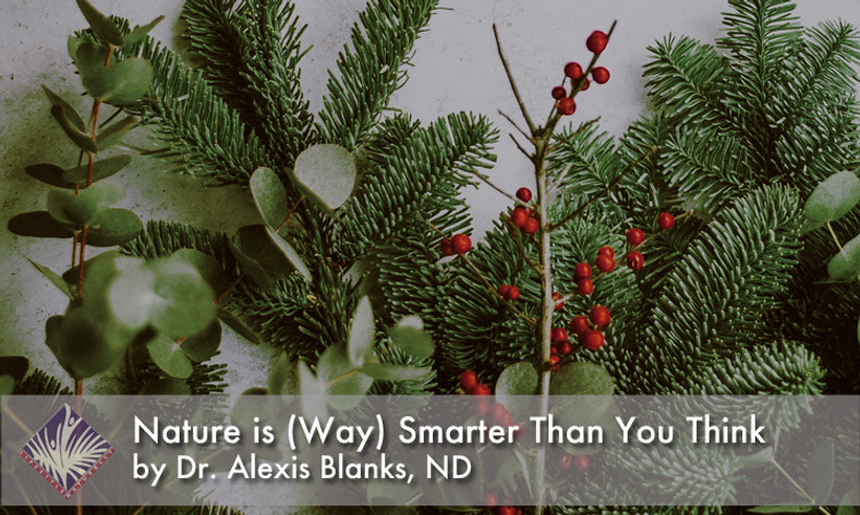 Nature is (Way) Smarter Than You Think