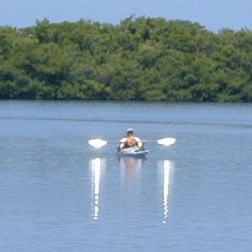 suspenz paddle reflectors storeyourboard