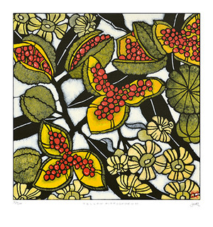 yellow pittosporum large archival print