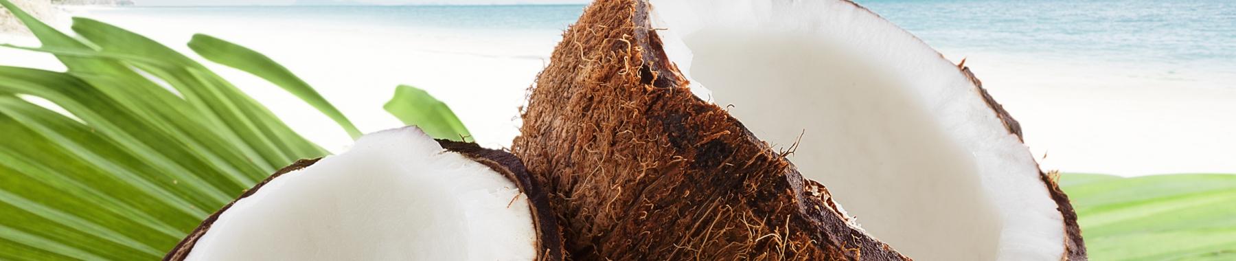 hdr-flav-coconut-1800.jpg